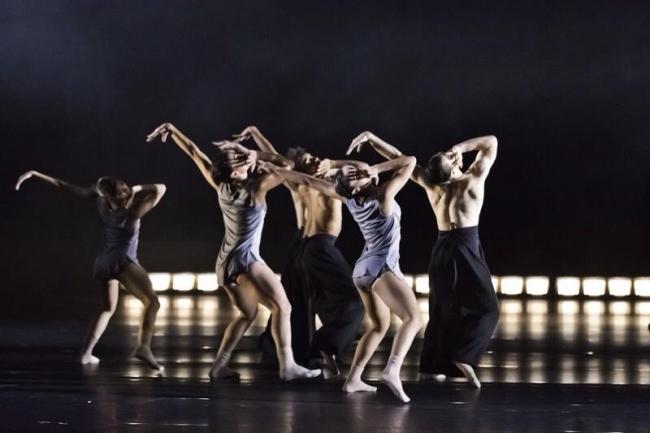 Compania de Danza