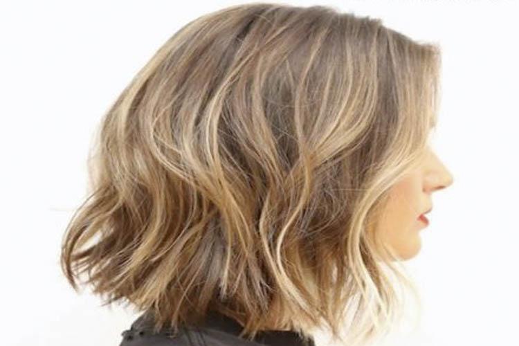 pelo corto invierno