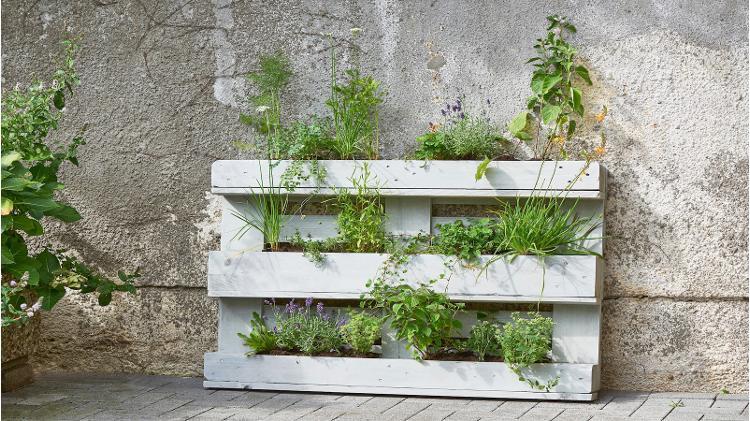 Jardín vertical hecho con pallets de madera